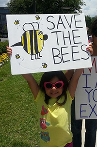 Help Save the Bees